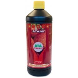 Flavor Ata