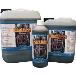 Root Juice 1L