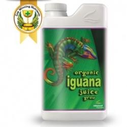 Organic Iguana grow