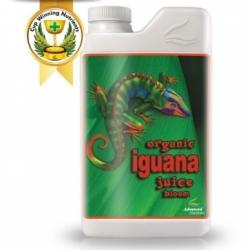 Organic Iguana bloom