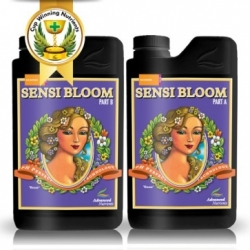 Sensi bloom A&B ph perfect