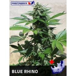 BLUE RHINO 100%
