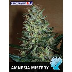 AMNESIA MISTERY 100%