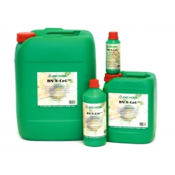 X-Cell 1L