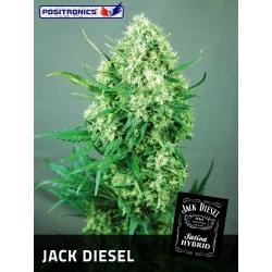 JACK DIESEL 100%
